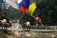 Mule train on trail to Namche Bazaar, Larja Bridge, Khumbu, Nepal Fine Art Print