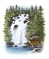 Stag Waterfall Fine Art Print