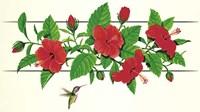 Hibiscus Hummer Fine Art Print