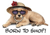 Shop Pup Fine Art Print