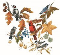 Fall Birds Fine Art Print