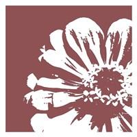 Flower II Framed Print