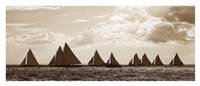 Sailboats Fine Art Print