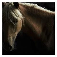 Spirit Horse Fine Art Print