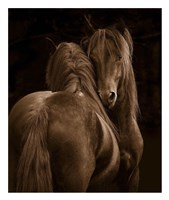 Tenderness I Fine Art Print