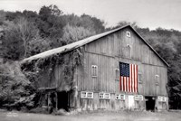 Patriotic Farm II Fine Art Print