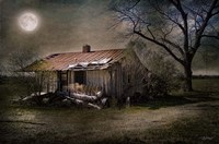 Forgotten in Moonlight Fine Art Print