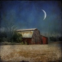 In the Land of Cotton Fine Art Print