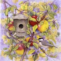 Chickadee & Apples Framed Print