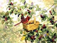 Berry Picker Fine Art Print