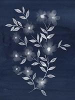 Flower Cyanotype II Framed Print
