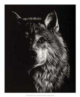Scratchboard Wolf III Fine Art Print