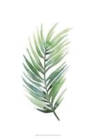 Untethered Palm I Framed Print