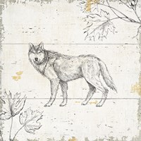 Wild and Beautiful VIII Framed Print