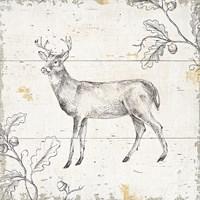 Wild and Beautiful VI Fine Art Print
