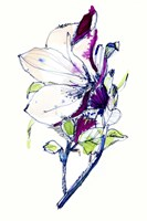 Flower Sketch Fine Art Print