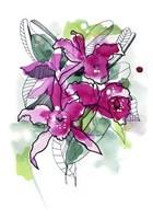 Magenta Orchids Fine Art Print