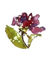 Marsala Rose Fine Art Print