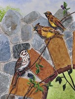Song Sparrow and Cedar Waxwings Fine Art Print