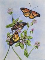 Irish Monarchs Fine Art Print