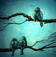 Evening Tweet Fine Art Print