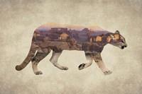 Arizona Mountain Lion Fine Art Print