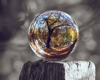 Pop of Color Glass Sphere Fine Art Print