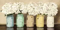 Hydrangeas in Mason Jars Framed Print