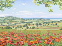 Campo di Papaveri Fine Art Print
