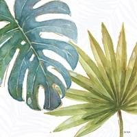 Tropical Blush VIII Fine Art Print
