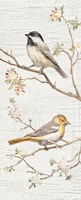 Vintage Birds Panel II Fine Art Print