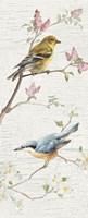 Vintage Birds Panel I Fine Art Print
