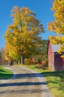 Road beside Classic Farm in Autumn, New Hampshire Fine Art Print