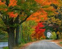 New Hampshire, Andover Autumn color, England home Fine Art Print