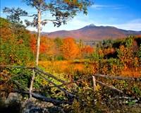 Autumn landscape of Mount Chocorua, New England, New Hampshire Fine Art Print