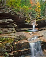 Sabbady Falls,White Mountains National Forest New Hampshire Fine Art Print