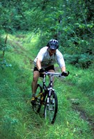 Mountain Biking on Providence Pond Loop Trail, White Mountain National Forest, New Hampshire Fine Art Print