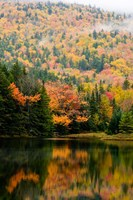 Ammonoosuc Lake in fall, White Mountain National Forest, New Hampshire Fine Art Print
