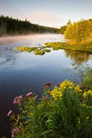 Androscoggin River, Errol, New Hampshire Fine Art Print