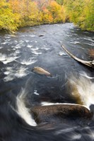 Ashuelot River, New Hampshire Fine Art Print