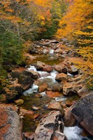 Liberty Gorge, Franconia Notch State Park, New Hampshire Fine Art Print