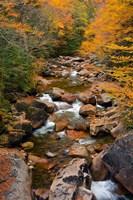 Liberty Gorge, Franconia Notch State Park, New Hampshire Fine Art Print