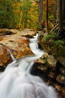 Pemigewasset River in Franconia Notch State Park, New Hampshire Fine Art Print