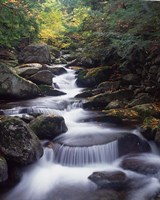 Gordon Water Falls, Appalachia, White Mountains, New Hampshire Fine Art Print