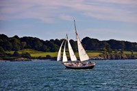 Sailing in Newport, Rhode Island Fine Art Print
