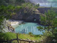 Dive In Fine Art Print