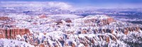 Snow Covered Bryce Canyon, Utah Fine Art Print