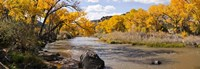 Rio Grande River, Pilar, New Mexico Fine Art Print