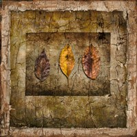 Autumn Leaves I Fine Art Print