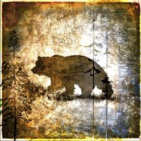 High Country Bear Framed Print